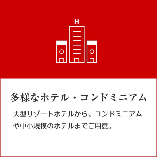beginner_intro_04